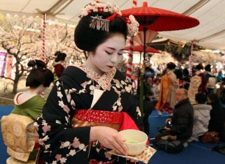 "The character of autumn: the festival ""Japanese autumn in Saint Petersburg"""