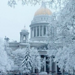 Petersburg became the most popular tourist city in Russia for Christmas